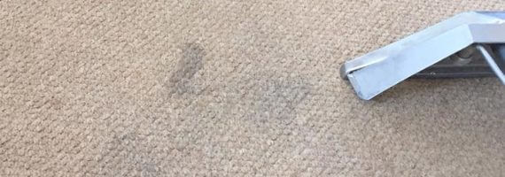 Professional carpet cleaners in gloucestershire sheen professional carpet cleaners solutioingenieria Image collections